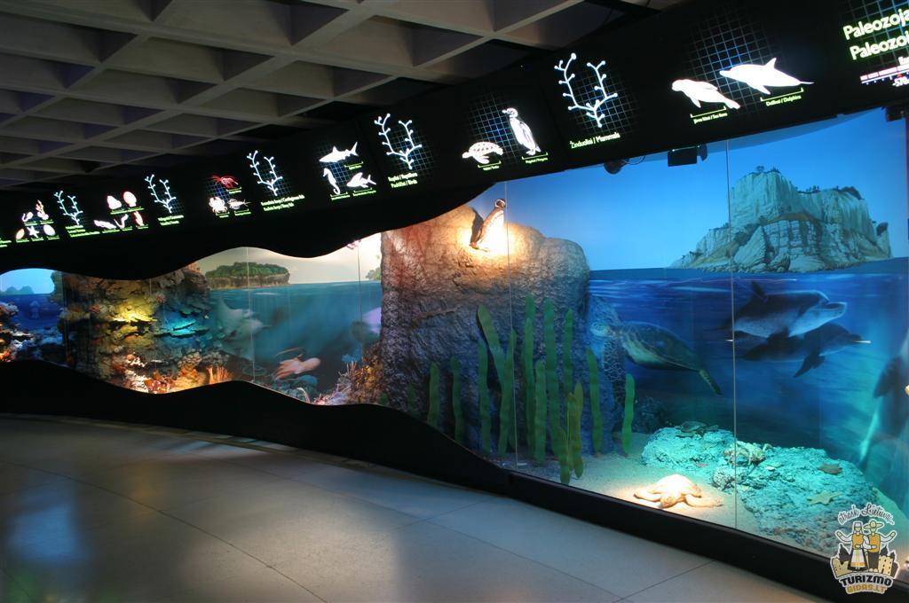 Lithuanian sea museum - TurizmoGidas.lt