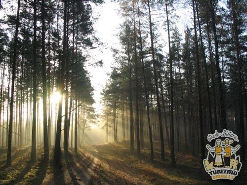 Dzukijos nacionalinis parkas lankytinos vietos