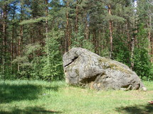 The Giant Stone of Dzukija